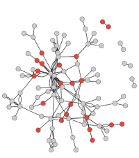 A visualization portraying the state of STEAM Factory's network as of 2019, showing new members highlighted in red.